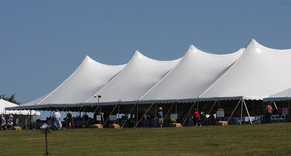 12 - Vendor tents a-gleam