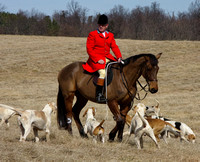 16 - Huntsman and hounds series