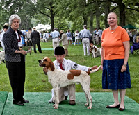14 - Winner, Single American Dog - Unentered (fewer than 20 couples)