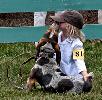 08 - First-time junior handler