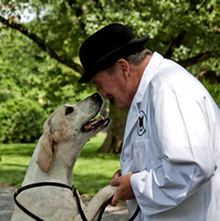 14 - Champion English Foxhound - Live Oak Fable
