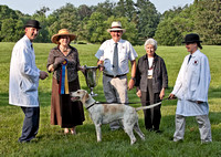 11 - Grand Champion Foxhound - Live Oak Fable