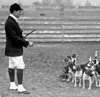 1914 - National Beagle Club of America