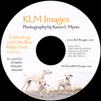 Order the CD - Foxhunting with the Blue Ridge Hunt (Volume 1) - 171 images