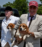 1 - Puppy Show (w/the Blue Ridge Hunt) (5/30/2011)