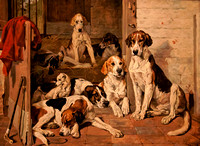 5 - National Sporting Library: Lives of Dogs (10/23/2010)