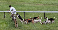 20 - Green Spring Valley Hounds taking the fence