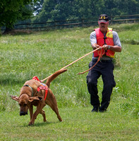 Virginia Bloodhound Search & Rescue (VBSAR)