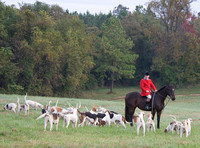 Huntsman and hounds, Boyce, Virginia