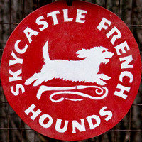 06 - Skycastle French Hounds