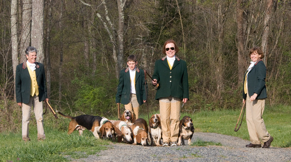 20 - Murder Hollow Bassets returning from the field
